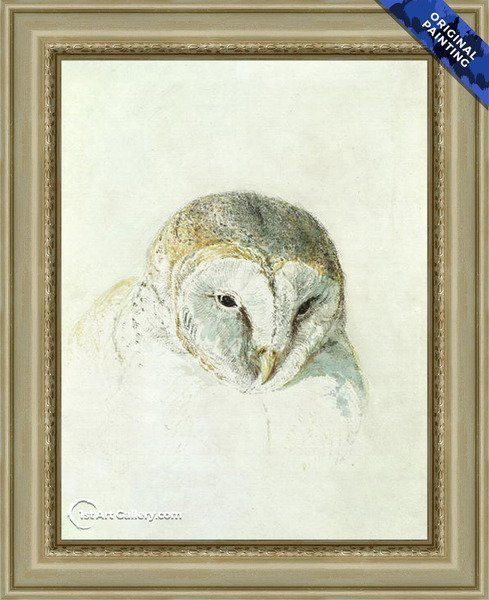 White Barn Owl, from The Farnley Book of Birds Painting - Original Painting