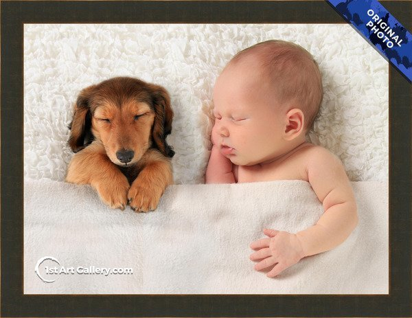 A photo of a newborn child with a dog