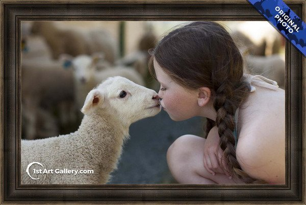 A photo of a girl kissing a lamb