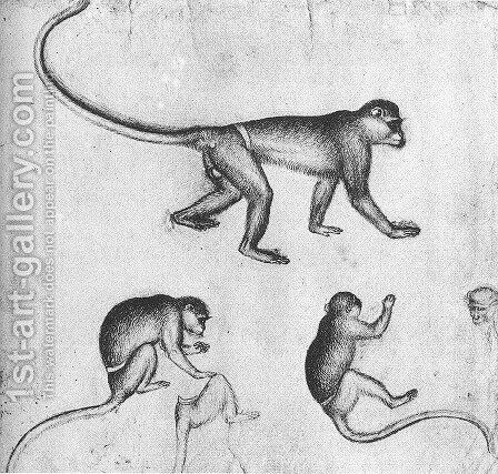 Apes (from the artist's sketchbook) c. 1430 by Antonio Pisano (Pisanello) - Reproduction Oil Painting