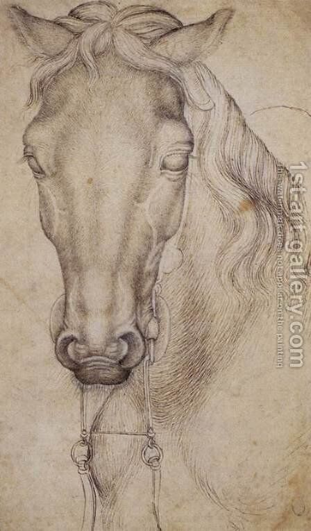 Study of the Head of a Horse 1437-38 by Antonio Pisano (Pisanello) - Reproduction Oil Painting