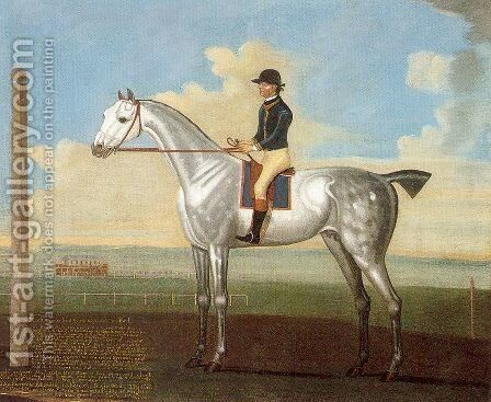 """""""Flyar"""" a Grey Stallion on the Curragh by Daniel Quigley - Reproduction Oil Painting"""