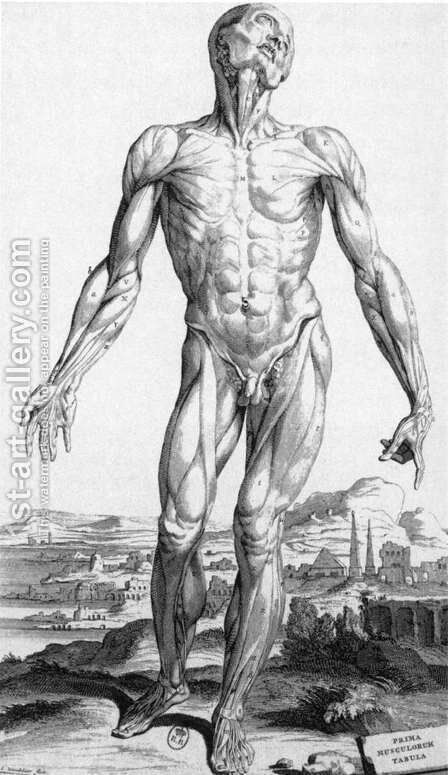 Anatomy 1543 by Andreas Vesalius - Reproduction Oil Painting
