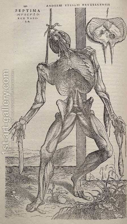 Dissected human body 1543 by Andreas Vesalius - Reproduction Oil Painting