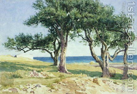 Old Olive Trees, Bordighera by Edwin Bale - Reproduction Oil Painting