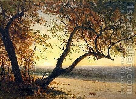 Untitled [Landscape in Florida or the Bahamas] by Albert Bierstadt - Reproduction Oil Painting