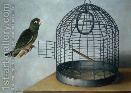 Parrot outside his cage by Cornelis Biltius - Reproduction Oil Painting