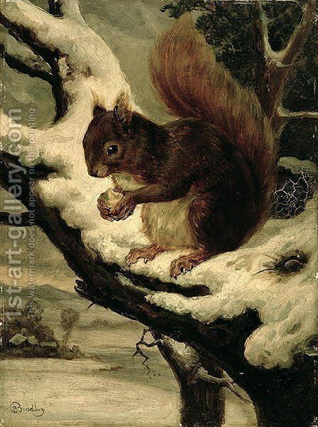 A Red Squirrel Eating a Nut by Basil Bradley - Reproduction Oil Painting