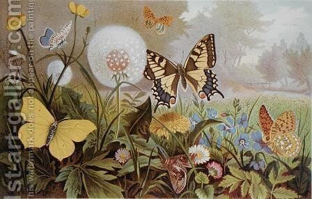 Butterflies, illustration from an Hungarian natural history book, c.1900 by Alfred Brehm - Reproduction Oil Painting