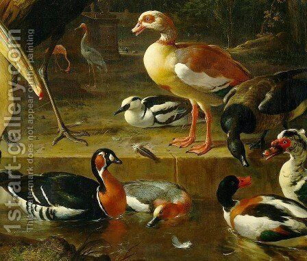 The Floating Feather [detail #1] by Melchior de Hondecoeter - Reproduction Oil Painting