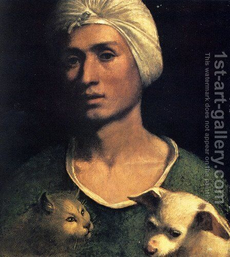 Portrait Of A Young Man With A Dog And A Cat by Dosso Dossi (Giovanni di Niccolo Luteri) - Reproduction Oil Painting