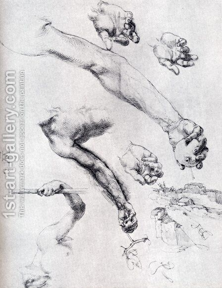 Three Studies From Nature For Adam's Arms In The 1504 by Albrecht Durer - Reproduction Oil Painting