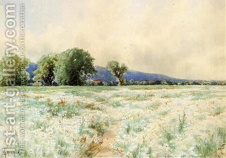 The Daisy Field by Alfred Thompson Bricher - Reproduction Oil Painting