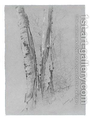 Study of Birch Trunks (Scribners') by Jervis McEntee - Reproduction Oil Painting