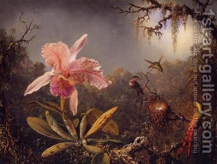 Cattelya Orchid and Three Brazilian Hummingbirds by Martin Johnson Heade - Reproduction Oil Painting