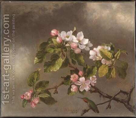 Hummingbird and Apple Blossoms by Martin Johnson Heade - Reproduction Oil Painting