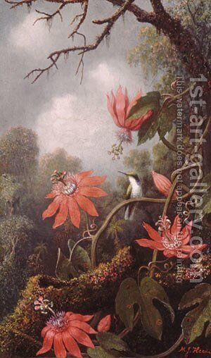 Hummingbird and Passionflowers by Martin Johnson Heade - Reproduction Oil Painting