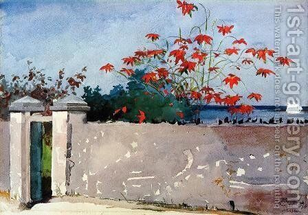 A Wall, Nassau by Winslow Homer - Reproduction Oil Painting