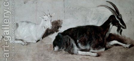 Two Goats by Jacques Laurent Agasse - Reproduction Oil Painting