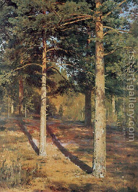 The Sun-lit Pines by Ivan Shishkin - Reproduction Oil Painting