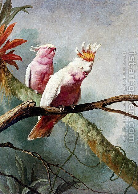 A Pair Of Leadbeaters Cockatoos by Jacques Barraband - Reproduction Oil Painting