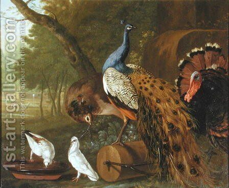 An Assembly of Birds in a Classical Park, 1719 by Pieter Casteels - Reproduction Oil Painting