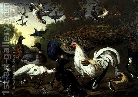 The Fable of the Raven with a Peacock, Cockerel, Woodpecker, Jay, Woodcock, and Magpie by Pieter Casteels - Reproduction Oil Painting