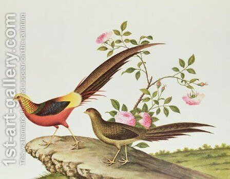 A golden pheasant, Ch'ien-lung period (1736-96) by Anonymous Artist - Reproduction Oil Painting