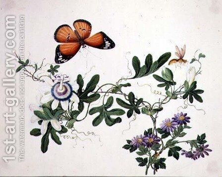 Passion Flower and Butterfly by Anonymous Artist - Reproduction Oil Painting