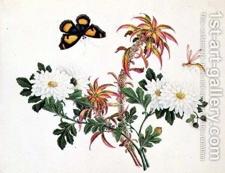 Two Stems of Amaranthus and Chrysanthemum with a Wasp and a Butterfly by Anonymous Artist - Reproduction Oil Painting