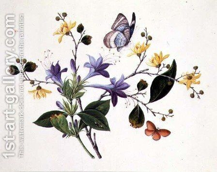 Flower Study and Insects by Anonymous Artist - Reproduction Oil Painting