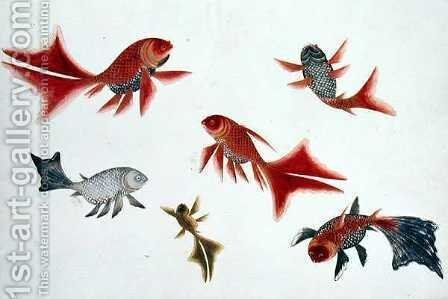 Gold and Silver Fish, from 'Drawings of Fishes from Malacca', c.1805-18 by Anonymous Artist - Reproduction Oil Painting