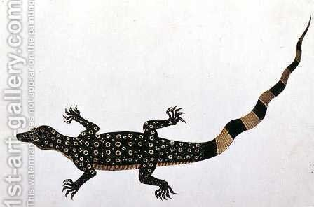 Guana, Bie awa Tana, from 'Drawings of Animals, Insects and Reptiles from Malacca', c.1805-18 by Anonymous Artist - Reproduction Oil Painting