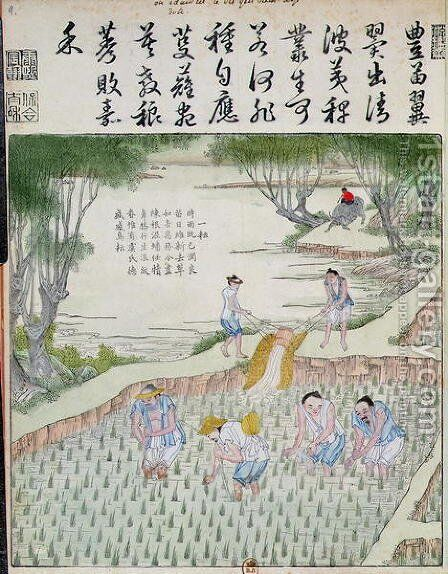 Transplanting, The Rice Culture in China by Anonymous Artist - Reproduction Oil Painting