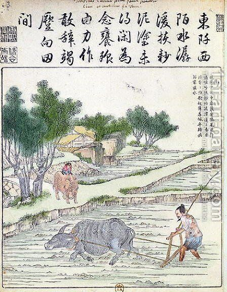 Rice cultivation in China (2) by Anonymous Artist - Reproduction Oil Painting