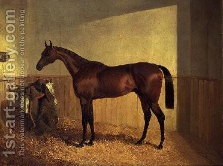 'The Merry Monarch', a bay racehorse, in a loosebox by John Frederick Herring Snr - Reproduction Oil Painting