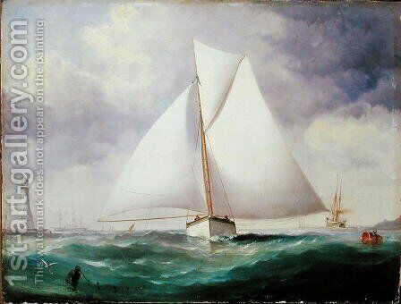 The Spinnaker Sail by Nicholas Matthews Condy - Reproduction Oil Painting