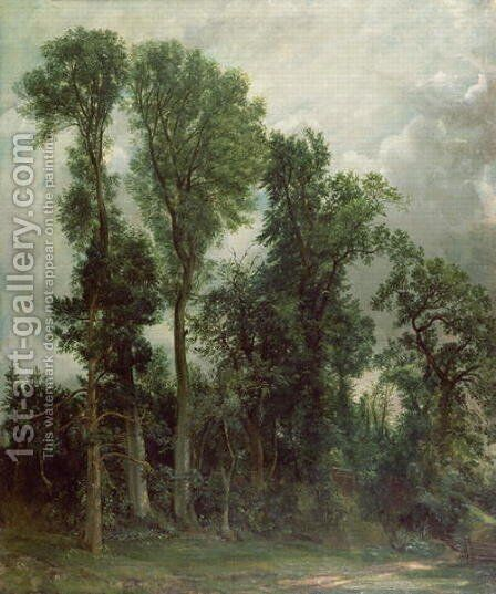 Trees at Hampstead by John Constable - Reproduction Oil Painting