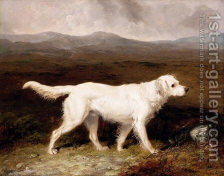 Charles Brett's White English Setter, Sam in a Moorland Landscape, 1836 by Abraham Cooper - Reproduction Oil Painting