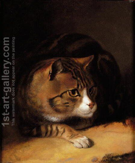 A Tabby Cat 1817 by Abraham Cooper - Reproduction Oil Painting