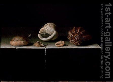 Six Shells on a Stone Shelf, 1696 by Adriaen Coorte - Reproduction Oil Painting