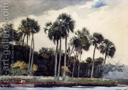 Red Shirt, Homosassa, Florida by Winslow Homer - Reproduction Oil Painting