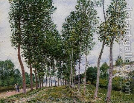 Lane of Poplars on the Banks of the Loing by Alfred Sisley - Reproduction Oil Painting