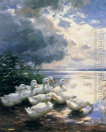 Ducks in the Morning by Alexander Max Koester - Reproduction Oil Painting
