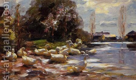 Ducks on a Riverbank on a Sunny Afternoon by Alexander Max Koester - Reproduction Oil Painting