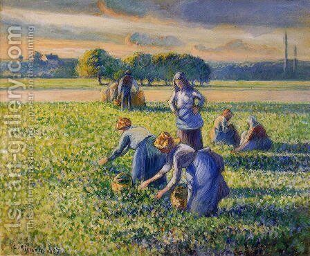 Picking Peas I by Camille Pissarro - Reproduction Oil Painting
