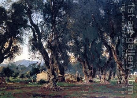 Olive Trees at Corfu by Sargent - Reproduction Oil Painting