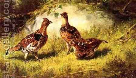 Ruffed Grouse by Arthur Fitzwilliam Tait - Reproduction Oil Painting
