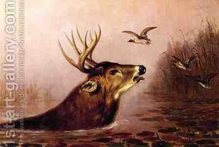 Deer in Marsh by Arthur Fitzwilliam Tait - Reproduction Oil Painting