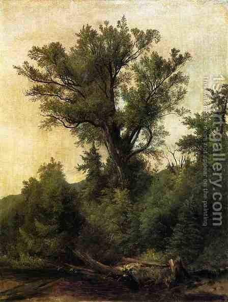 Woodland Stream by Asher Brown Durand - Reproduction Oil Painting